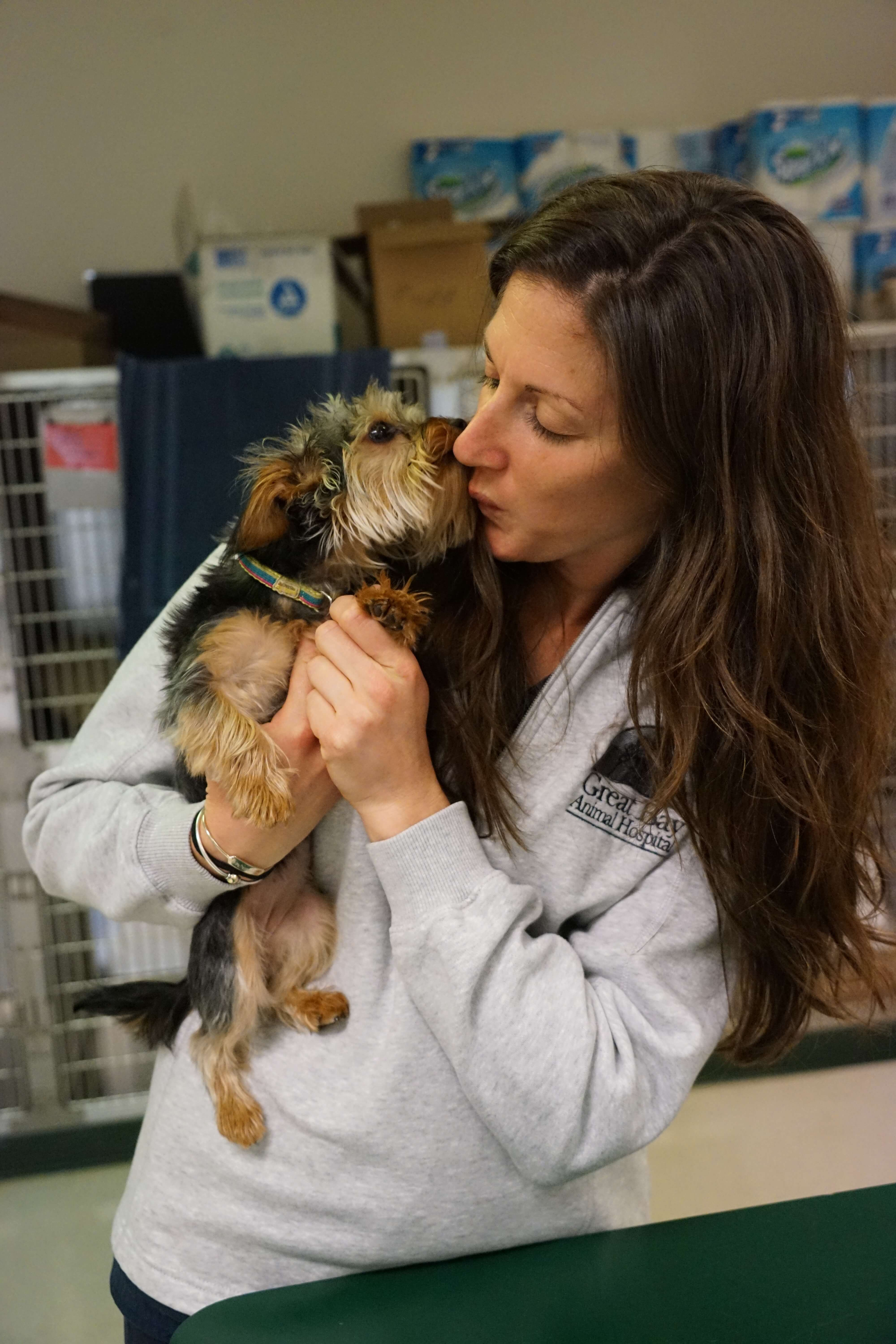 top veterinary clinic for employment in durham