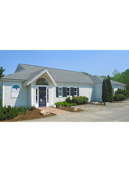 best rated animal hospital in durham new hampshire