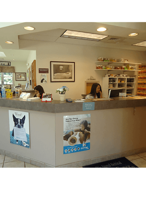 animal hospital reception area durham new hampshire
