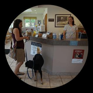 comprehensive animal pet care services durham new hampshire